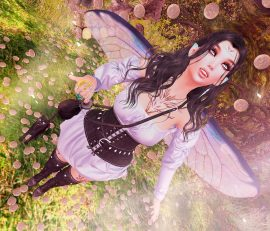 Toss a coin to your…..Fae?