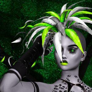 Helena Stringer – SL Syndicate – Spider Plant – Thumbnail